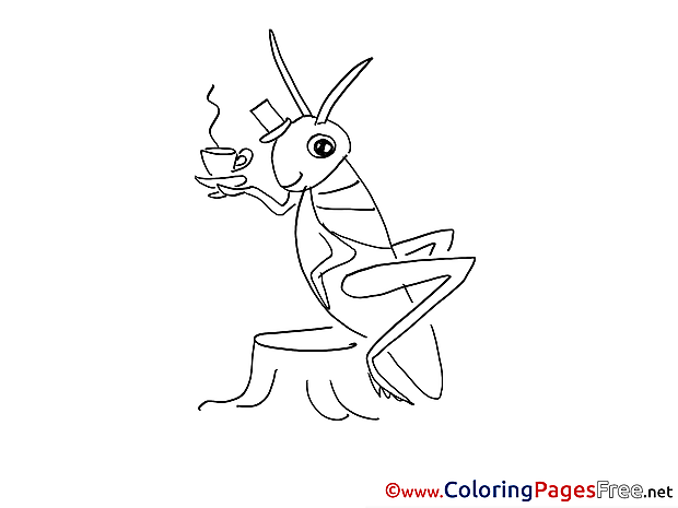 Grasshopper Cup of Tea Children Coloring Pages free