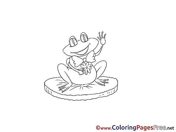 Frog Coloring Sheets download free