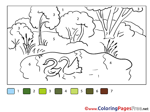 Pond Painting by Number Colouring Sheet free