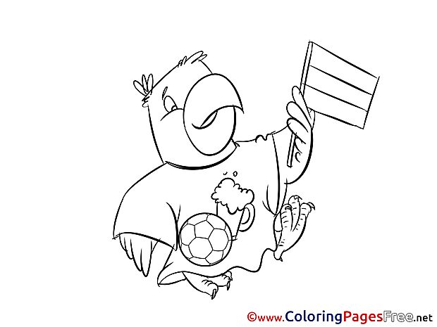 Parrot download Soccer Supporter Coloring Pages