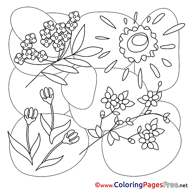 For Kids Spring download Sun Flowers Coloring Pages