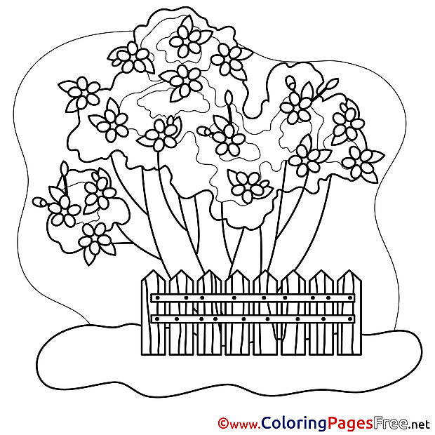Front Garden free Spring Coloring Sheets