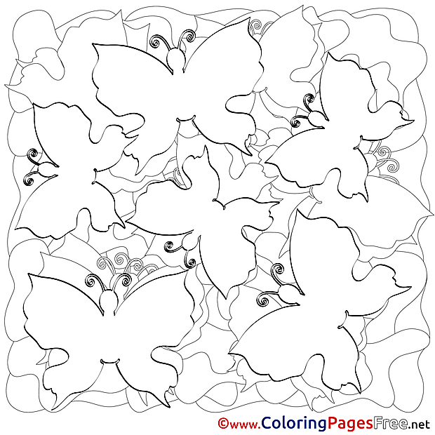 Colouring Page Butterflies Summer free