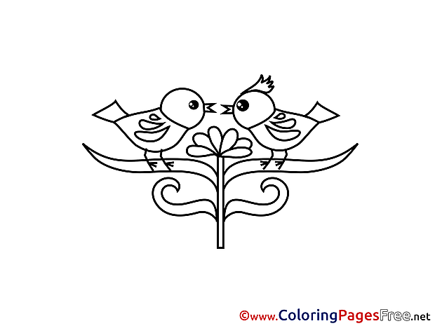 Birds for Kids Valentine's Day Colouring Page