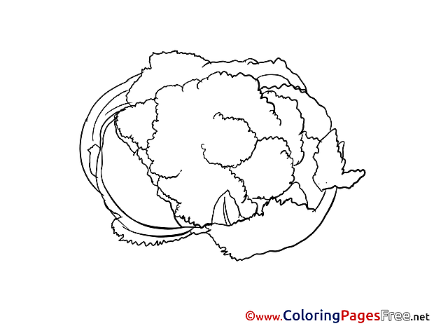 Cabbage Kids free Coloring Page