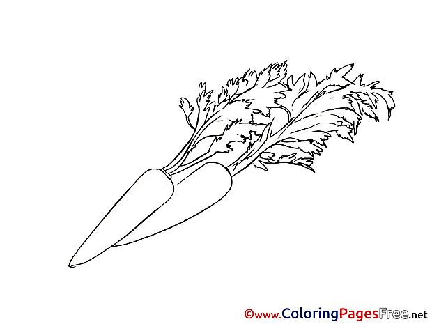 Carrots download printable Coloring Pages