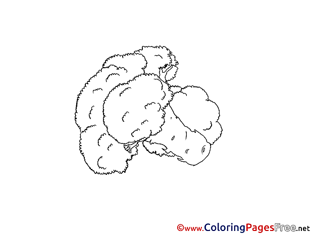 Cauliflower Colouring Page printable free