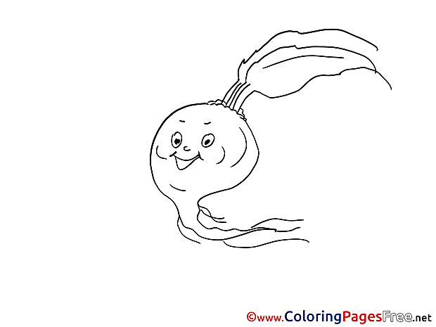 Kids download Coloring Pages Radish