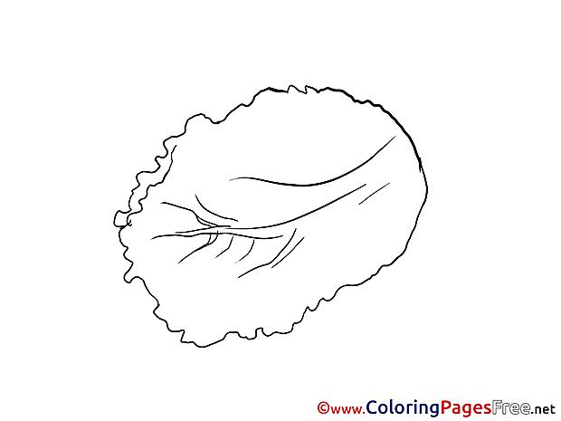 Salad Coloring Sheets download free