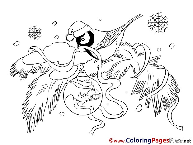 Bullfinch Winter Colouring Page for Kids