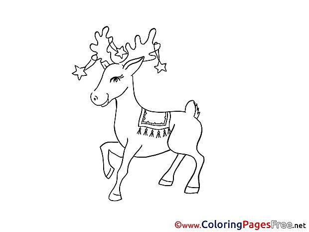 Deer Winter Colouring Sheet free