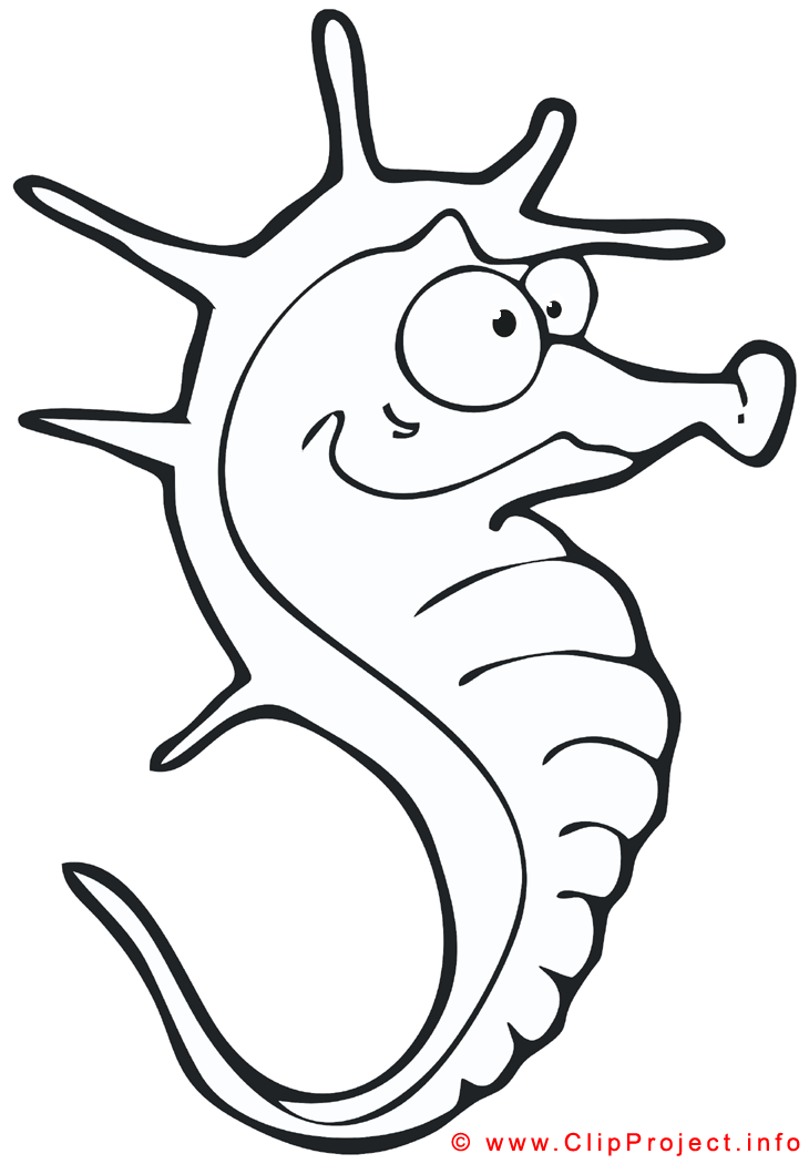 Sea Horse Coloring Page Free Png