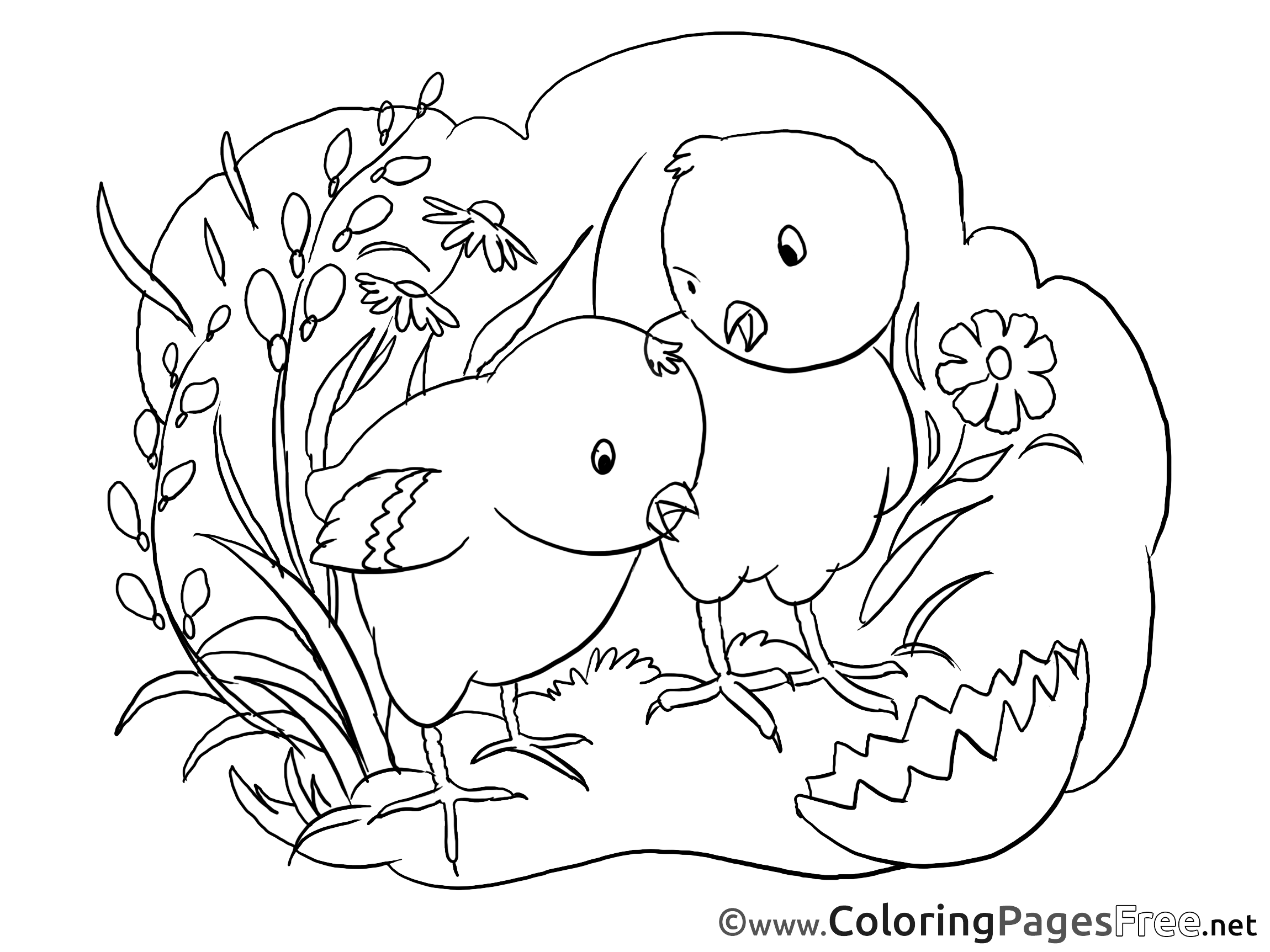 Free coloring pages chickens - Free Coloring Pages Chickens 44