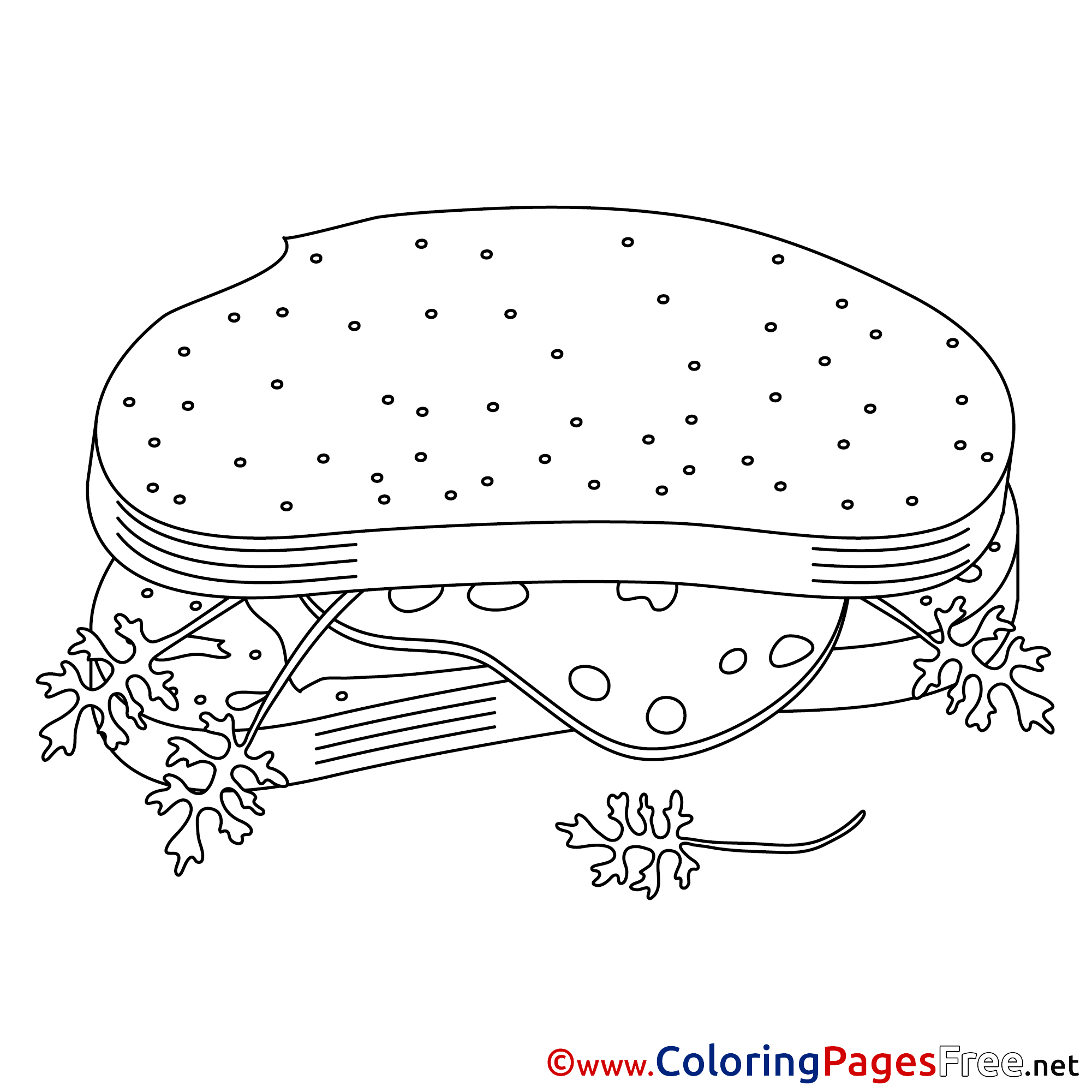 sandwich colouring page printable free