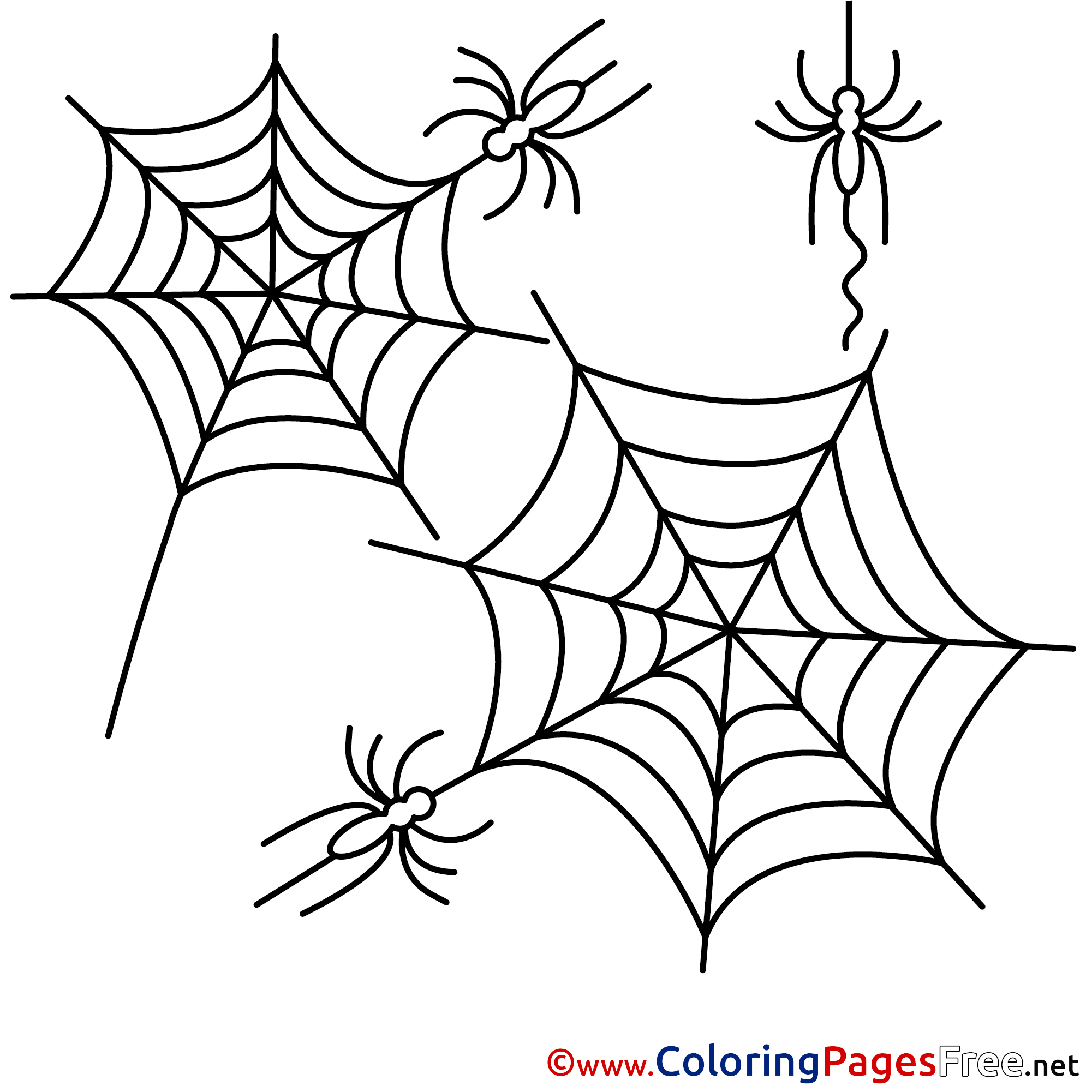 Web Halloween Coloring Pages Spider Free