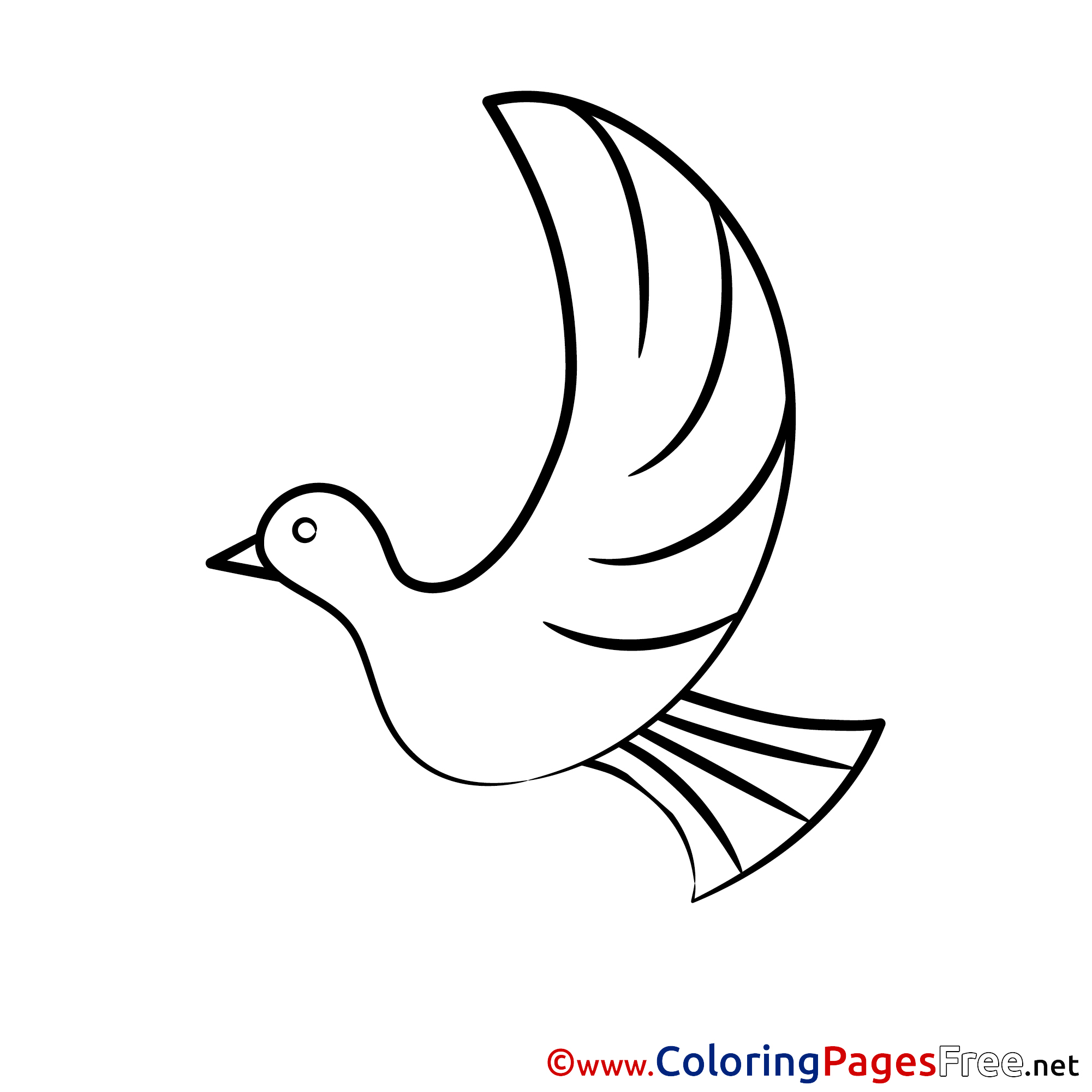 Confirmation Coloring Pages Download Pigeon