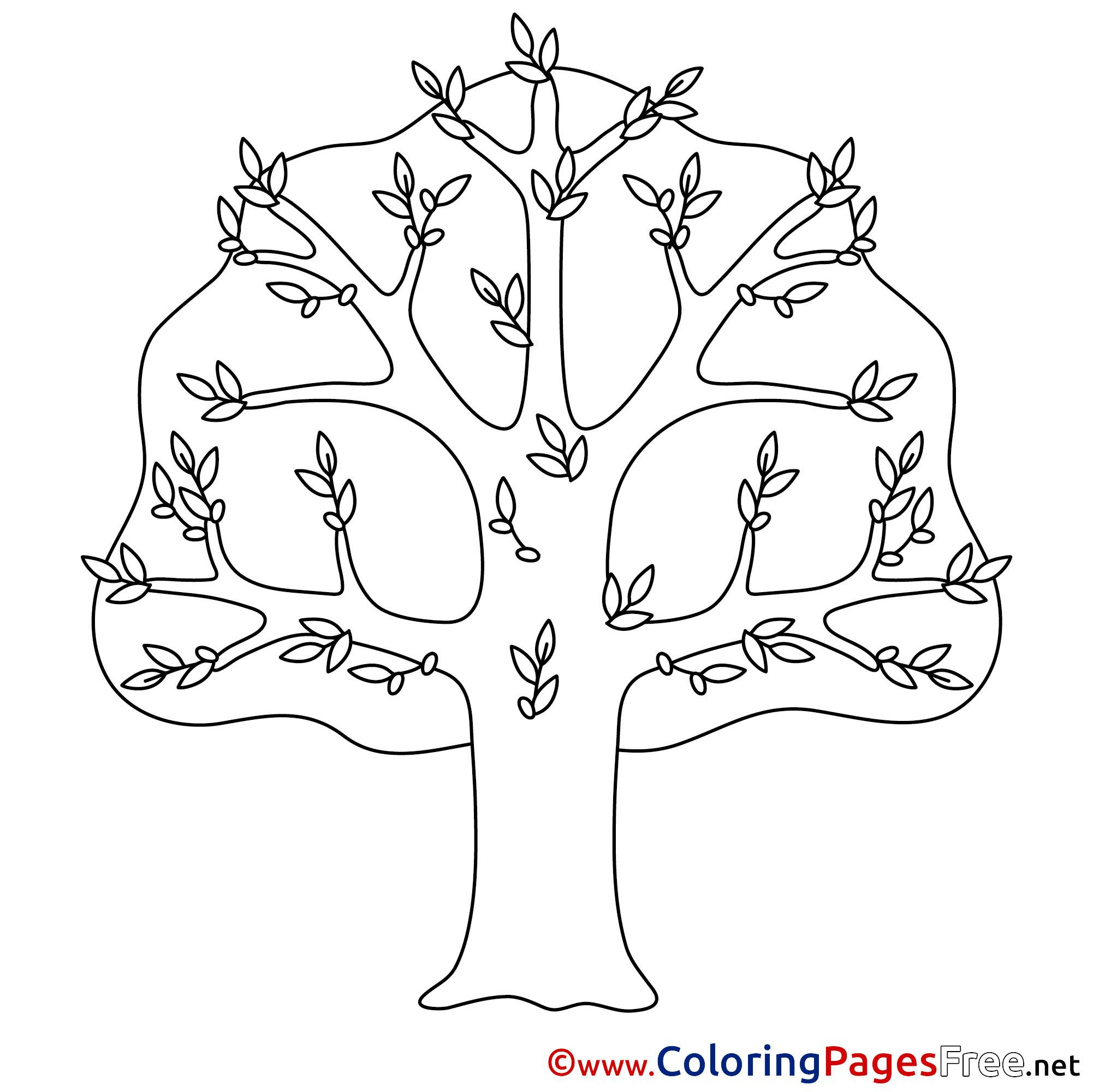 Free Printable Tree Coloring Pages For Kids - Kleurplaten, Bloem ... | 2001x2002