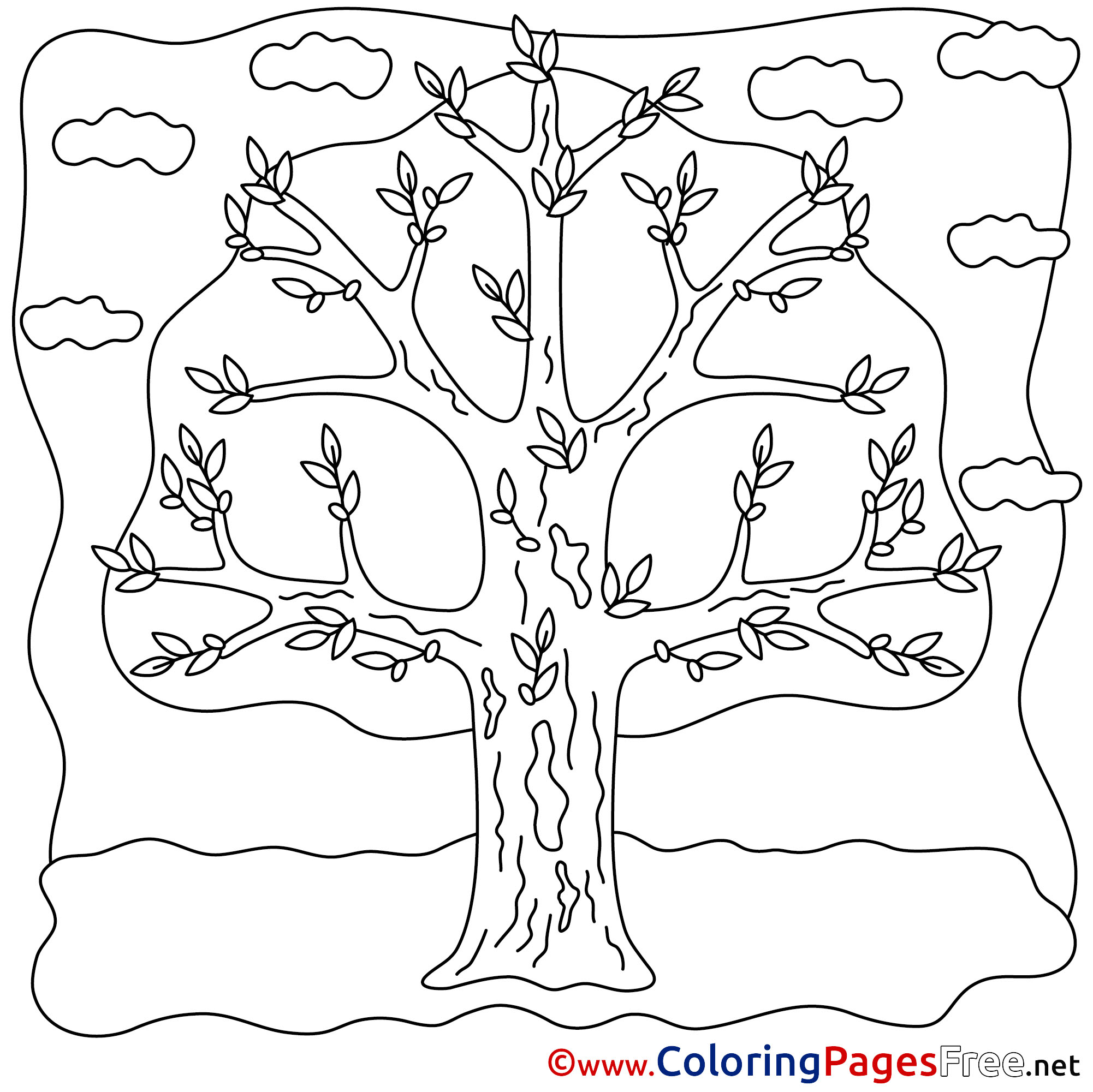 Tree For Kids Spring Colouring Page