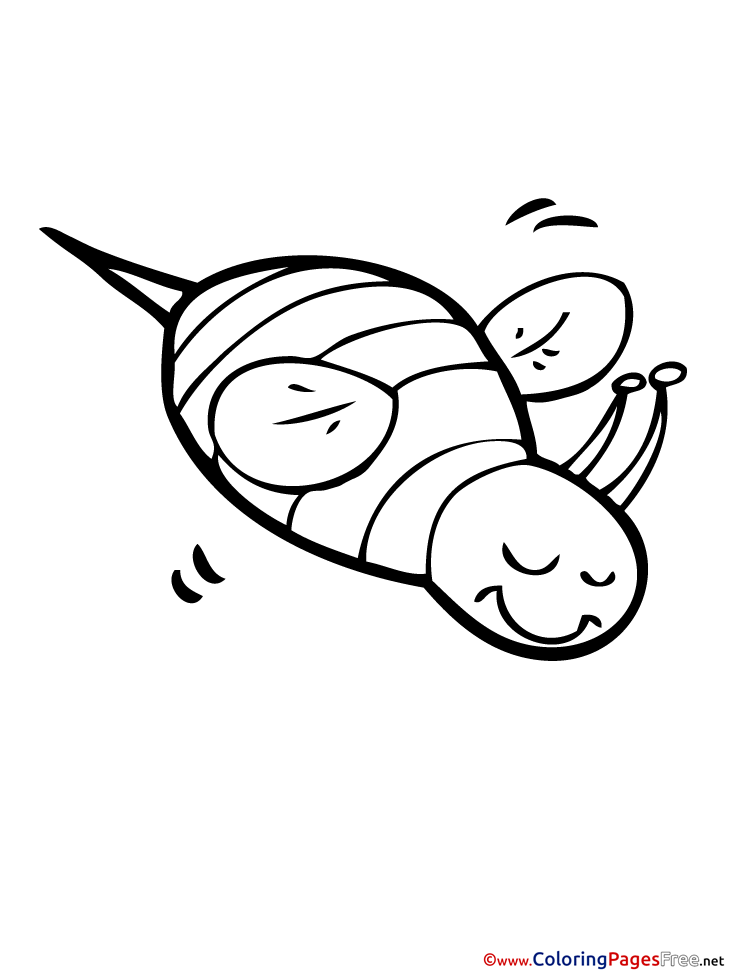 Bug Summer free Coloring Pages