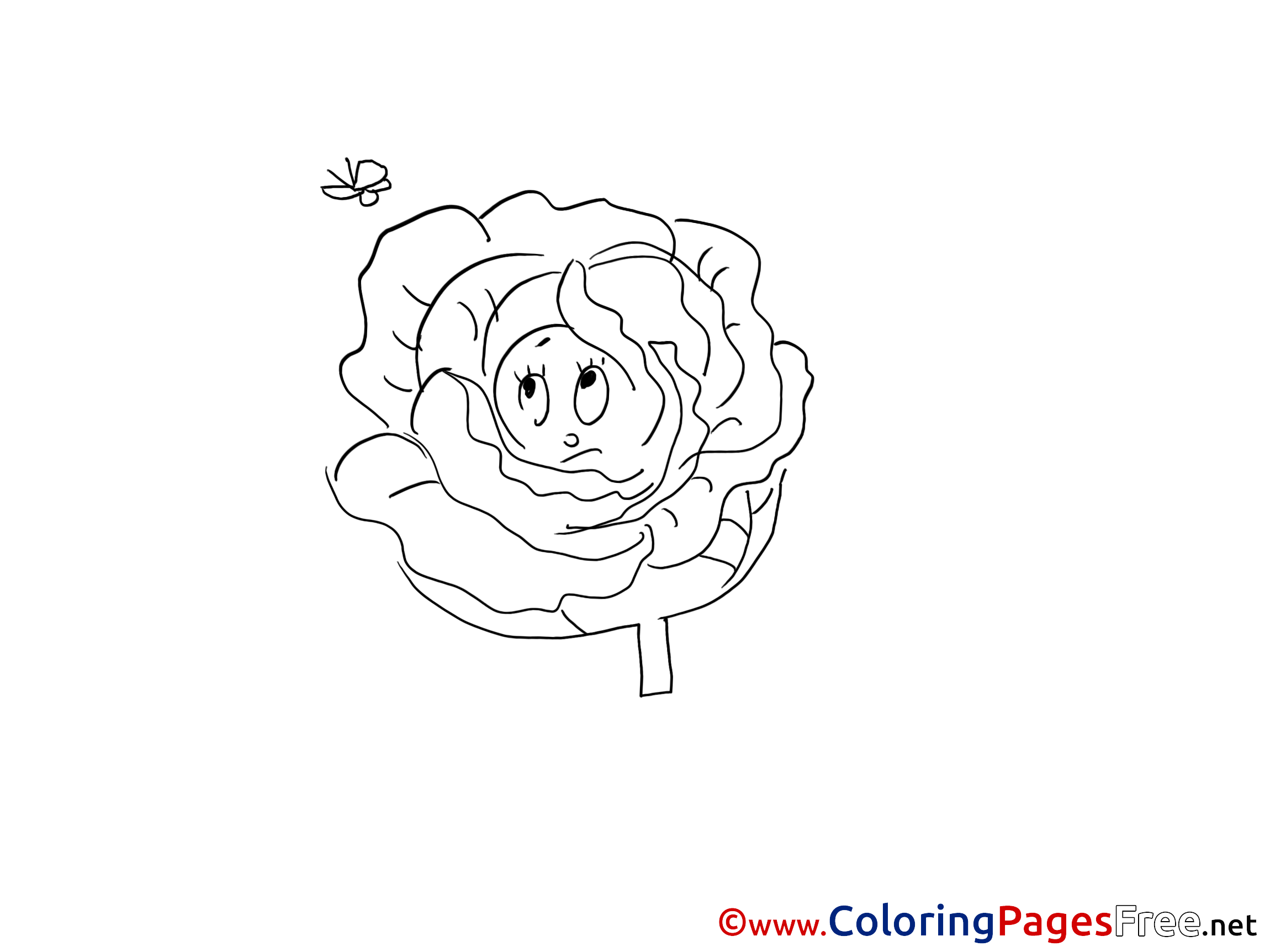 Colouring pages of cabbage - Colouring Pages Of Cabbage 53
