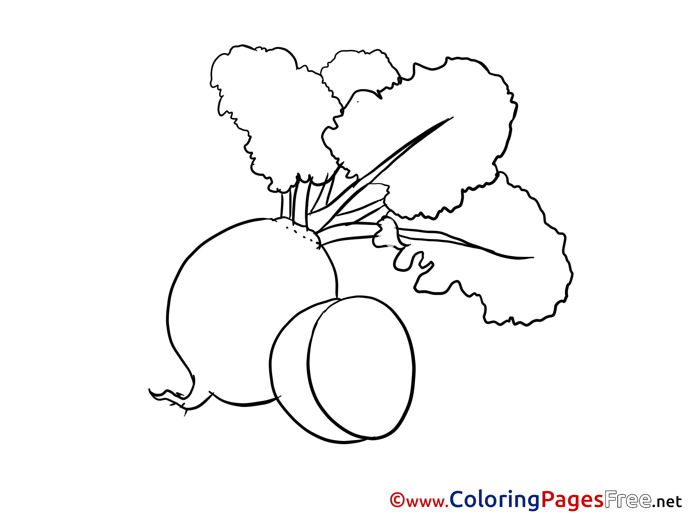 radish download printable coloring pages