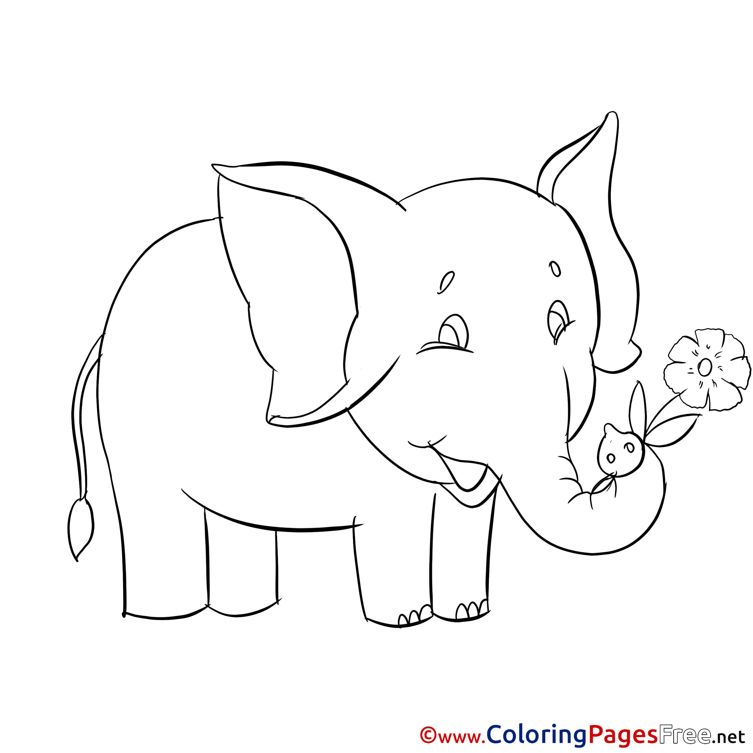 Elephant Coloring Sheet