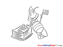 Bee download Colouring Sheet Fourth of July free