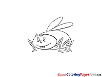 Cockroach free printable Coloring Sheets