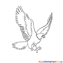 Eagle for Kids printable Colouring Page