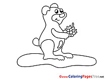 For free Bear Coloring Pages download