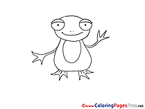 Frog download Colouring Sheet free