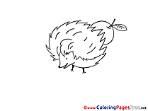 Hedgehog Colouring Page printable free