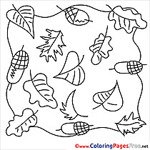 Acorns Autumn download Colouring Sheet free