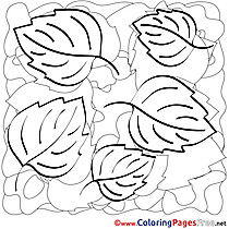 Autumn Colouring Sheet download free