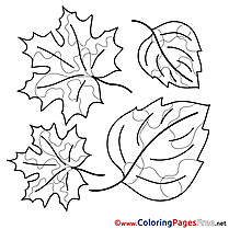 Beautiful Leaves Coloring Sheets download free