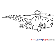 Field free printable Coloring Sheets