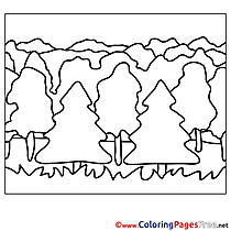 Forest Colouring Page printable free