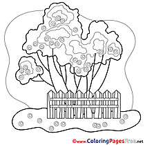 Garden for free Coloring Pages download