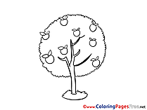 Harvest Apple printable Coloring Pages for free