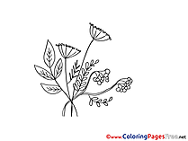Herbs Kids download Coloring Pages