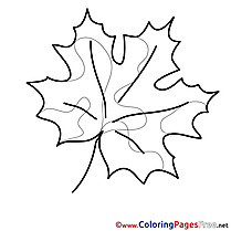 Image Leaf for free Coloring Pages download