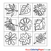 Image Leaves download Colouring Sheet free