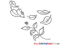 Insects free Colouring Page download