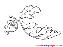 Oak Leaf Colouring Sheet download free