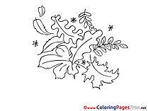 Oak leaf free Colouring Page download