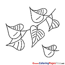 Picture Leaves Coloring Pages for free