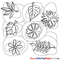 Picture Leaves free printable Coloring Sheets