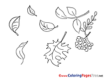Rowan Coloring Sheets download free