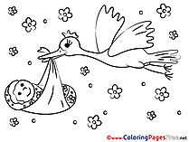 Bird Baby for Kids printable Colouring Page