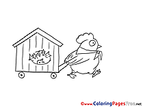 Chicken printable Coloring Sheets download